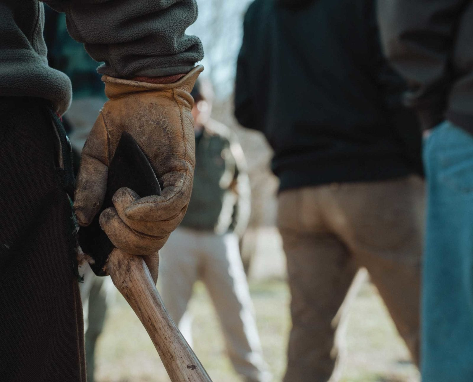 non-profit volunteers works on a habitat project for woodcock