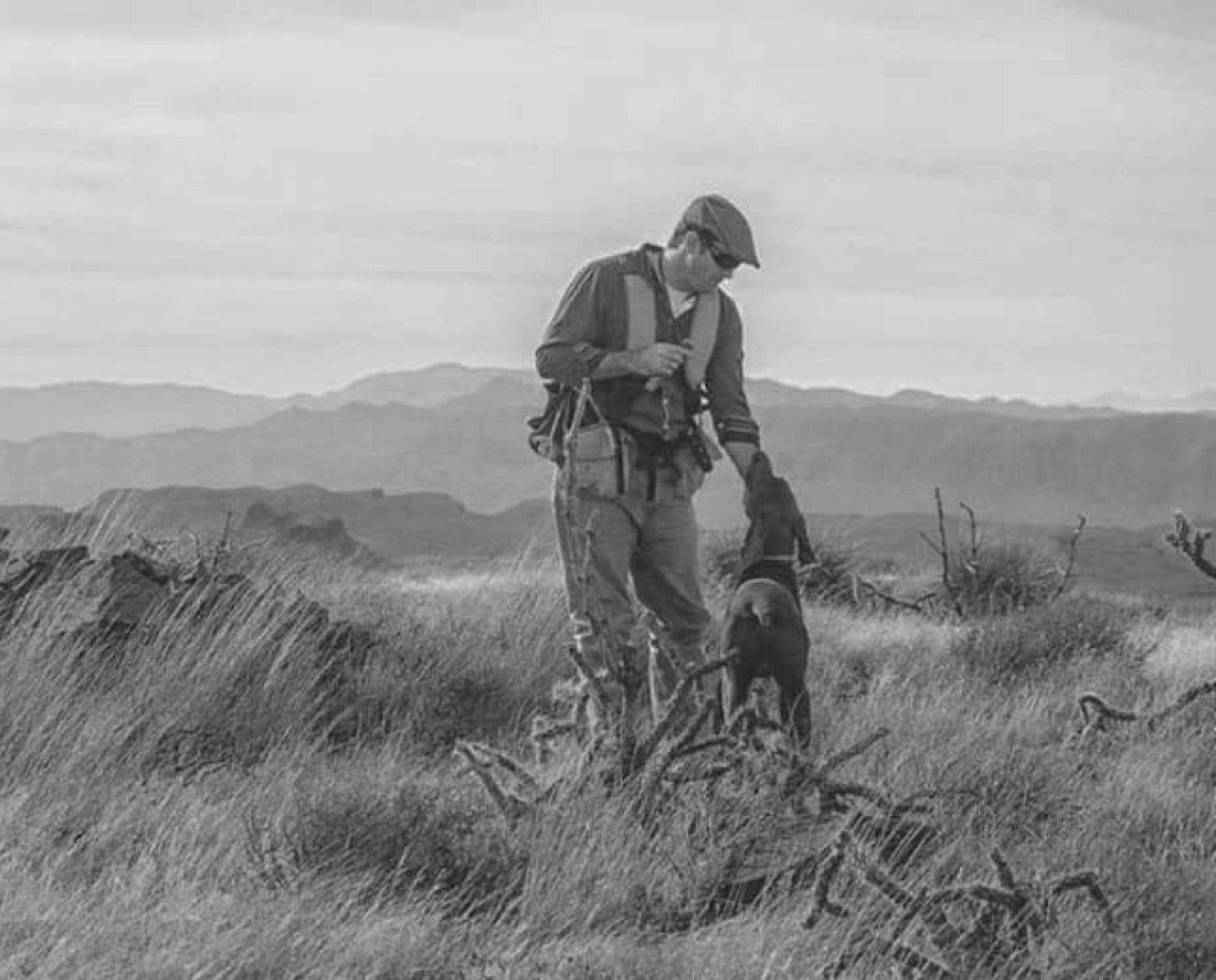 Bird hunter Ryan O'Shaughnessy out wingshooting scaled quail.
