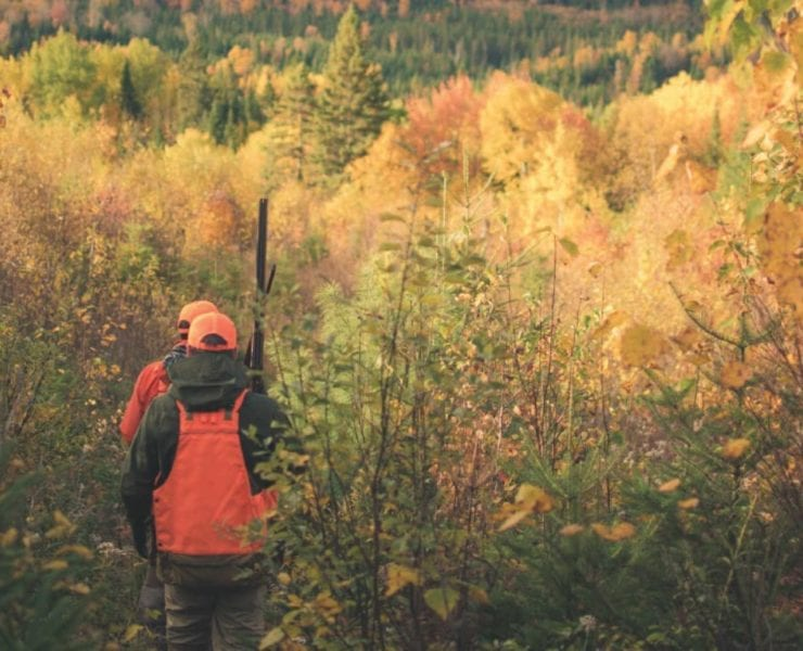 Two bird hunters in the woods of Quebec.