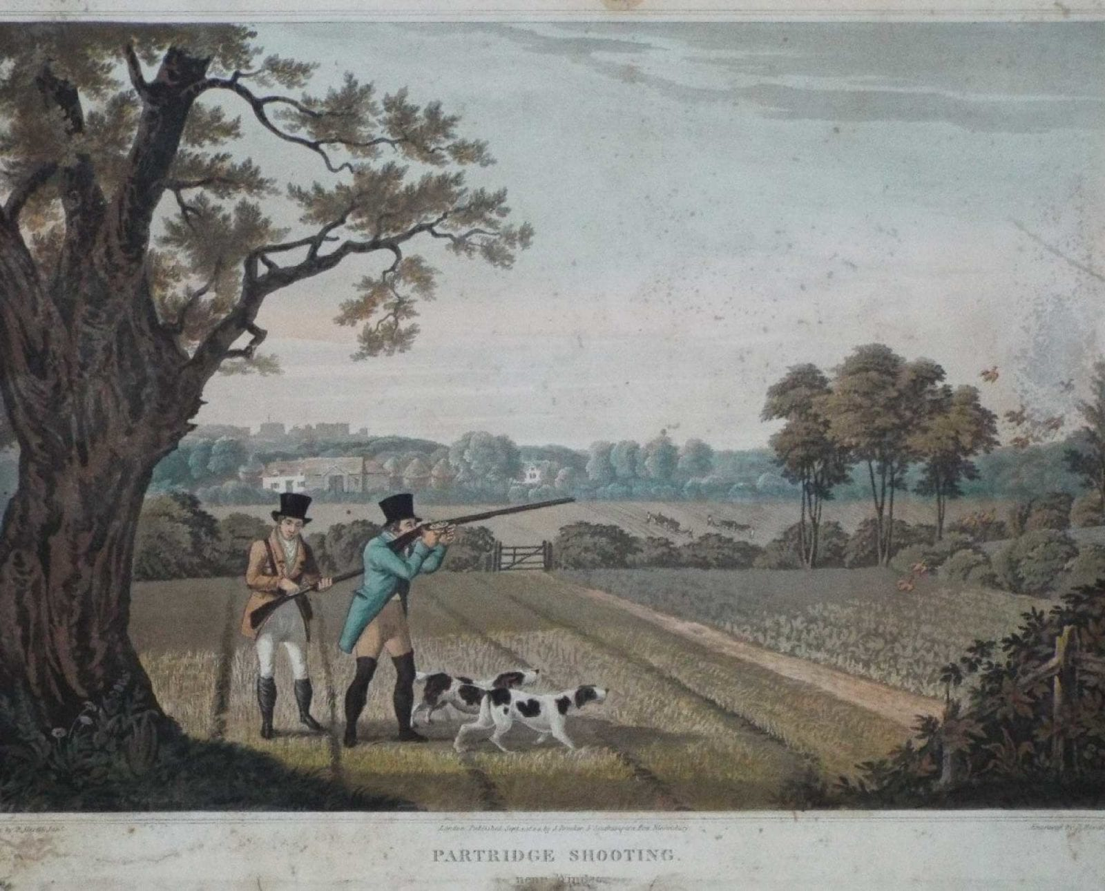 Hunters in the United Kingdom on a partridge shoot with hunting dogs