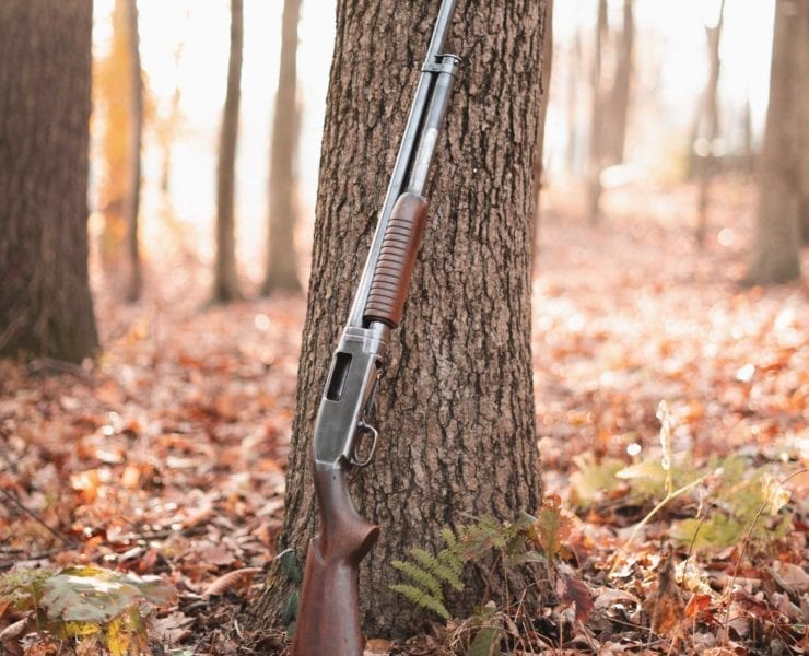 A Winchester Model 12 on a bird hunt