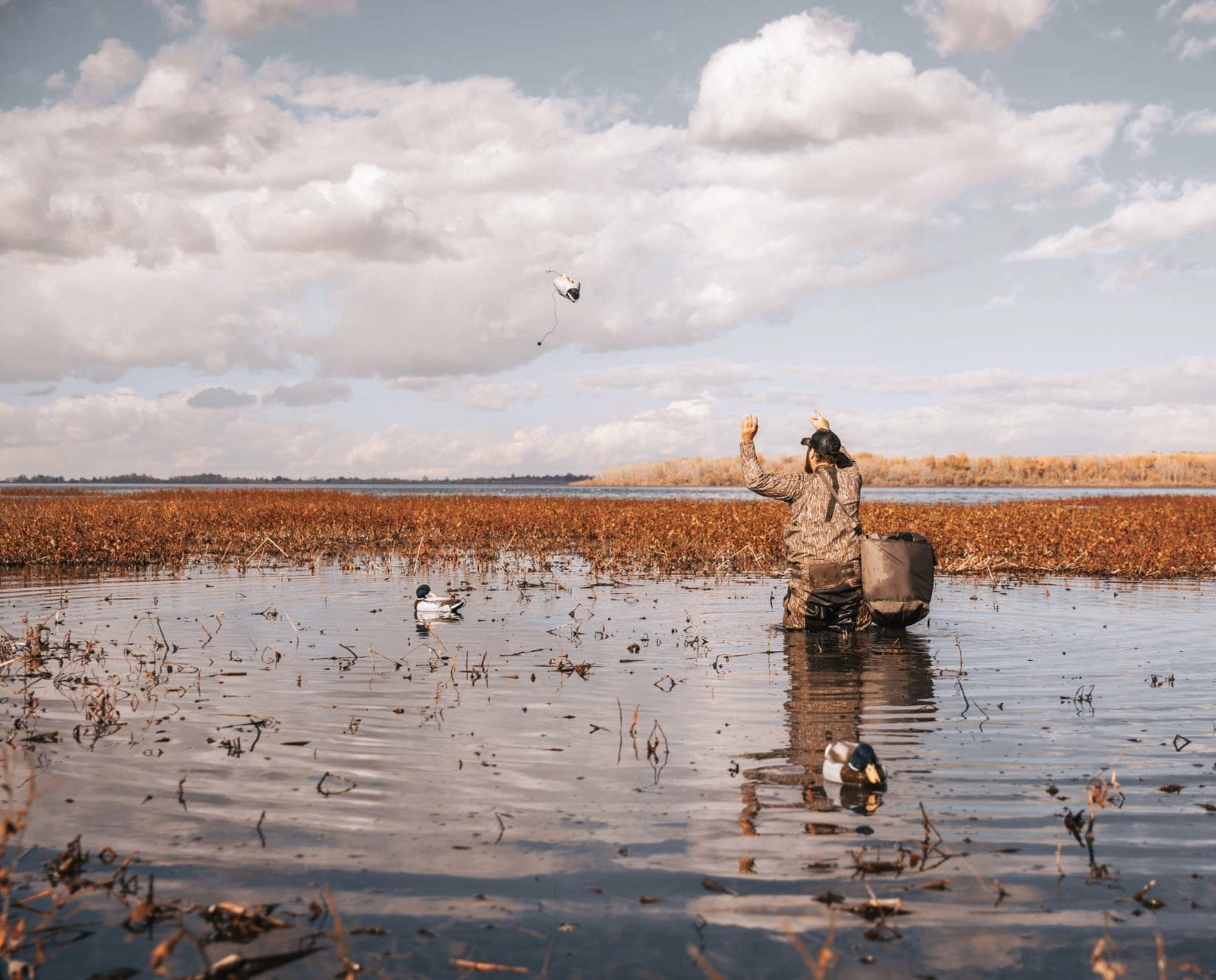 A duck hunter sets up a small decoy spread.