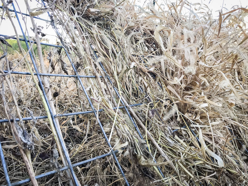Construction of a wire panel duck blind with natural grasses