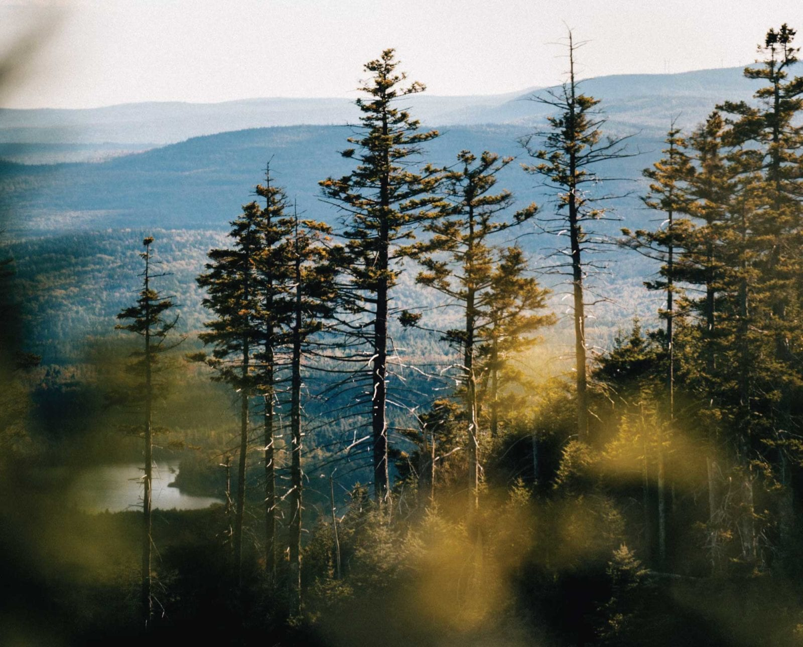 Image of large unmapped area of the United States wilderness